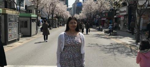 The cherry blossoms in Sinchon have bloomed!