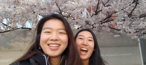 Enjoying cherry blossom season here in Seoul!