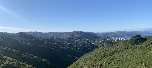 View from the top of Polhill Reserve