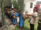 """After the millet was tied up, all of the students stood in a line to pass the millet into the storage barn. Each time they passed it on, they have to thank the gods for bringing them the harvest by saying """"Uninang!"""" which means """"Thank you!""""."""