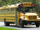 Yellow school buses are an example of something we may not realize is unique to the U.S.A.!