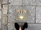 Look down at your feet! Walking is the most common form of transportation in Logroño.