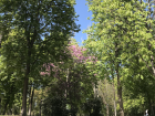 Madridlenos have created a welcoming environment of clean streets and trash-free parks