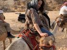 This camel loved getting head scratches