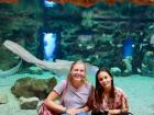 That is a shark swimming behind us
