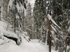 The trails featured up to 2 feet of snow, but were still well traveled by the time we arrived in the late afternoon