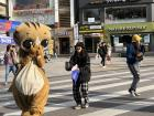 A person dresses in a cat costume to advertise for the cat cafe in Sinchon.